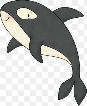Dolphin - Dolphin Killer Whale Cetacea PNG