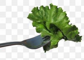 Tie Lettuce Fork - Lettuce Vegetable Salad Food Eating PNG