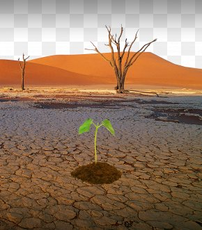 Lack Of Water Resources - Drought Natural Disaster Water Desertification PNG