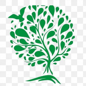 Tree Of Life - McIntyre Elder Law The Chedworth Story: The History Of A Cotswold Parish Celebrant Wedding PNG