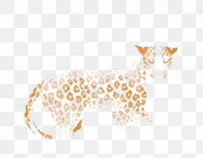 Lion - Lion Big Cat Giraffe Felidae PNG