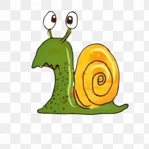 Symbol Sea Snail - Snail Cartoon PNG