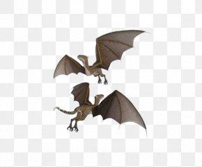 Flying Dinosaurs - Flight Westland Wyvern U98dfu8089u6050u9f8d Wing PNG
