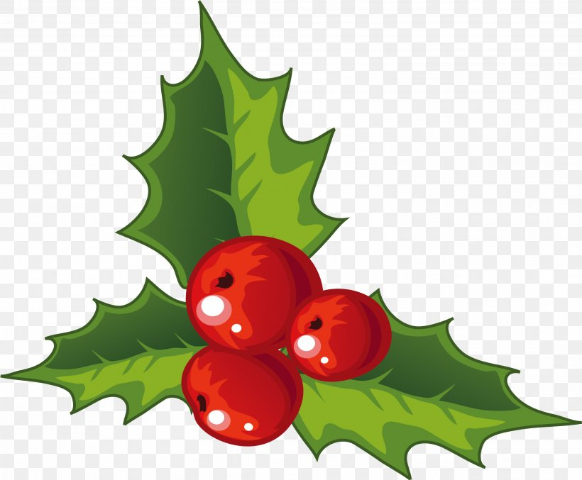 Holly Christmas Decoration, PNG, 3001x2478px, Christmas, Aquifoliaceae, Aquifoliales, Christmas Decoration, Clip Art Download Free