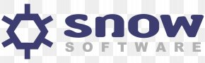 Software - Software Asset Management Computer Software License Manager Snow Software AB IT Asset Management PNG