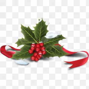 Holly Icon - Common Holly Santa Claus Christmas PNG