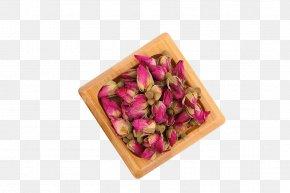 Roses Bones Dry - Flower Beach Rose Zang-fu Pink PNG
