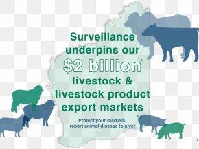 Sheep - Sheep Cattle Disease Goat Livestock PNG