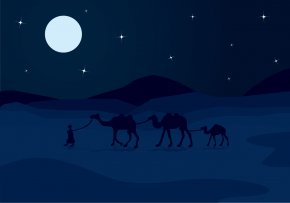 Vector Night Sky Camel - Moonlight Sky Night Illustration PNG