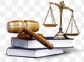 Lawyer - Jurist Lawyer Law Firm Legal Advice PNG