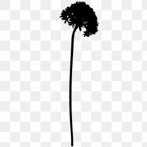 M Flower Plant Stem Leaf - Tree Black & White PNG