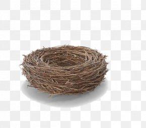 Gray Bird's Nest - Edible Birds Nest Bird Nest PNG