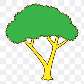Plant Tree - Green Leaf Tree Clip Art Plant PNG