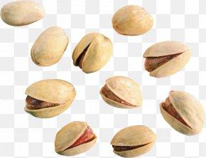 Some Pistachios - Pistachio Nut Digital Image Clip Art PNG