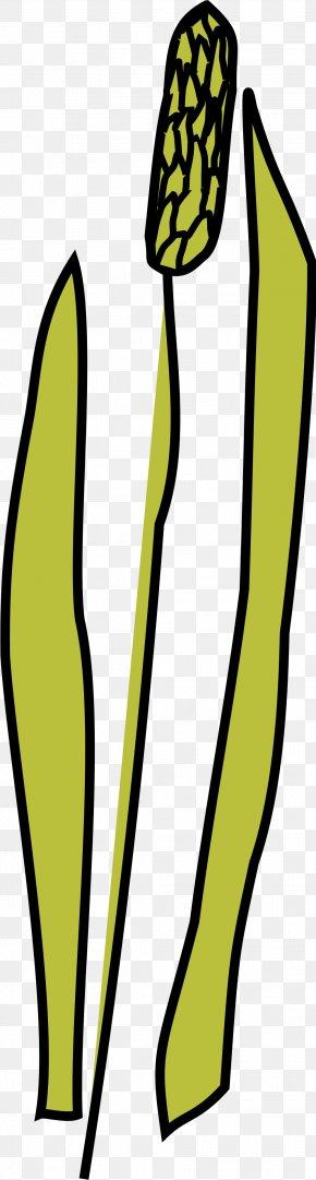Dreadlocks Clipart - Clip Art Horse Illustration Vector Graphics Free Content PNG