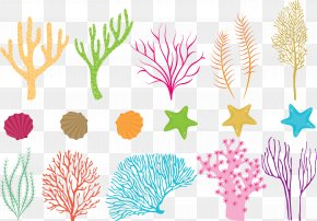 Vector Colored Coral - Coral Reef Fish Sea PNG