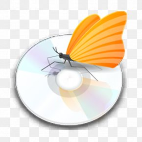 DVD Discs - Icon Design Application Software Download Icon PNG