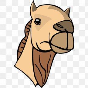 Camel Images - Bactrian Camel Dromedary Camel Face Clip Art PNG