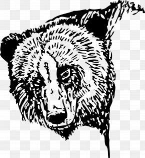 Bear - Polar Bear Brown Bear American Black Bear Clip Art PNG