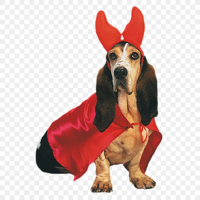 Pug Cairn Terrier Beagle Jack Russell Terrier Dress Up Your Dog, PNG, 850x850px, Pug, American Kennel Club, Basset Hound, Beagle, Buycostumescom Download Free