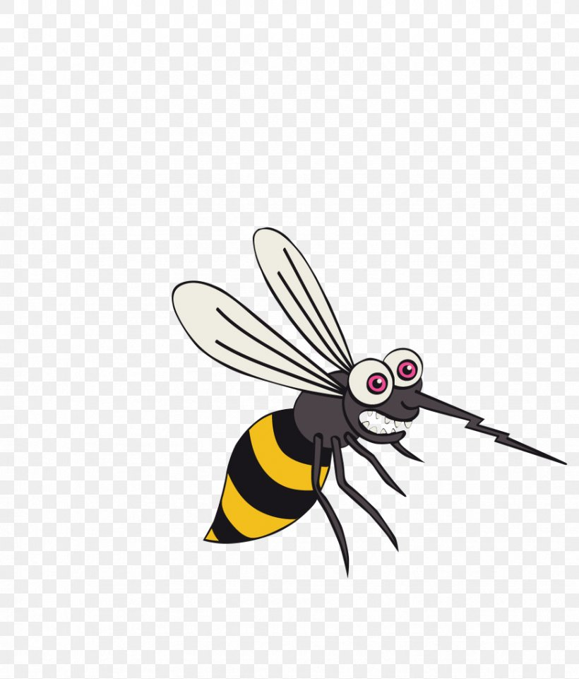Mosquito Cartoon Icon Png 873x1024px Mosquito Arthropod Bee Cartoon Fly Download Free