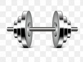 Vector Barbell - Physical Fitness Physical Exercise Fitness Centre Icon PNG
