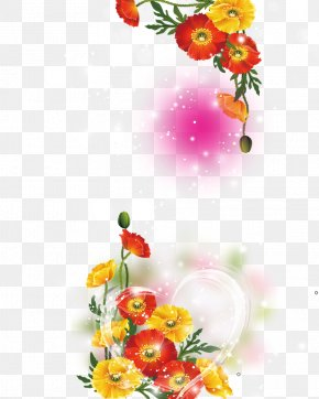 Beautiful Background - Petal Flower PNG