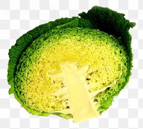 Cabbage Half - Broccoli Cabbage Vegetarian Cuisine PNG