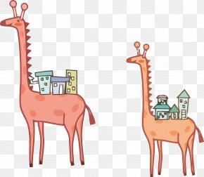Vector Illustration Giraffe - Northern Giraffe Illustrator Illustration PNG