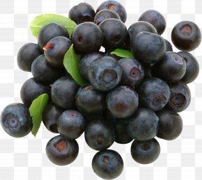 Blueberries - European Blueberry Vaccinium Uliginosum Fruit PNG