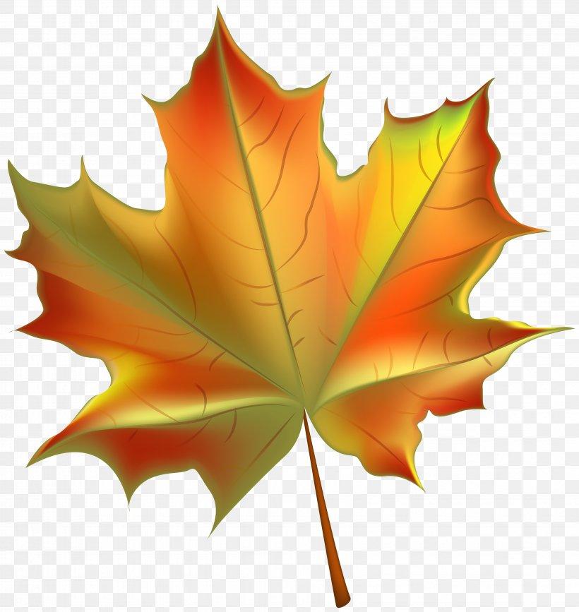 Autumn Leaf Color Clip Art, PNG, 6614x7000px, Autumn Leaf Color, Autumn, Color, Deciduous, Green Download Free