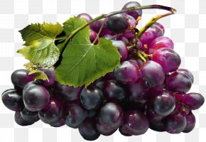 Large Black Grapes Clipart - Grape Seed Extract Juice Grapefruit PNG