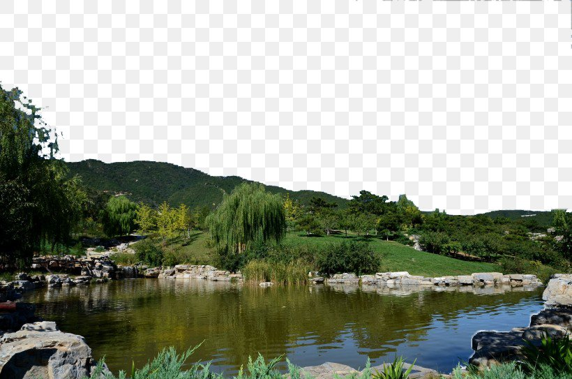 Western Hills U897fu5c71u56fdu5bb6u68eeu6797u516cu56ed Jiufeng National Forest Park Gongqing Forest Park, PNG, 820x543px, Western Hills, Beijing, Forest, Forest Park, Gongqing Forest Park Download Free
