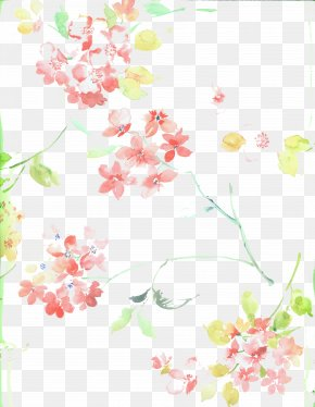 Cherry Blossoms - Cherry Blossom Flower PNG