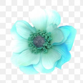 Flower - Flower Bouquet Turquoise Color Petal PNG