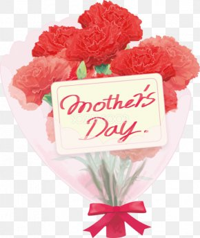 Mother Days - Carnation Mother's Day Cut Flowers Flower Bouquet PNG