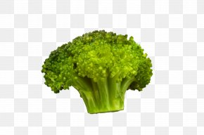 Organic Vegetable Broccoli - Broccoli Organic Food Vegetable Cauliflower PNG