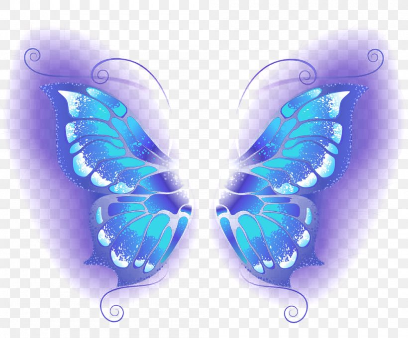 Butterfly Blue Wallpaper Png 1000x830px Butterfly Azure