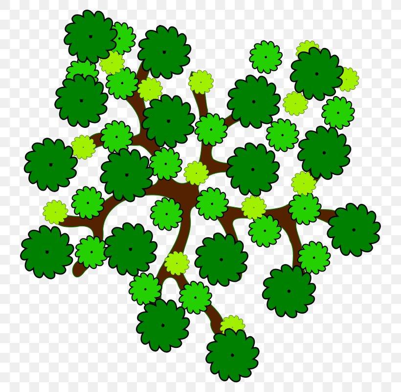 Tree Favicon Clip Art, PNG, 800x800px, Tree, Arborist, Crown, Favicon, Flowering Plant Download Free