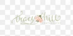 Wedding Logo - Calligraphy Logo Brand Font PNG