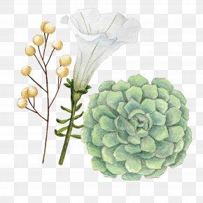 Watercolor Flowers - Floral Design Watercolor Painting Flower PNG