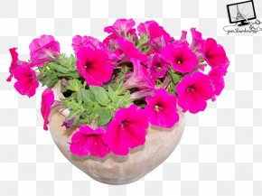 Flower Pot - Flowerpot Houseplant Clip Art PNG