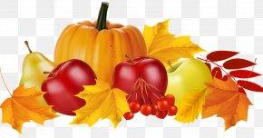 Pumpkin - Pumpkin Pie Autumn Clip Art PNG
