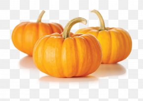 Pumpkin - Pumpkin Pie Zucchini Kabocha Vegetable PNG