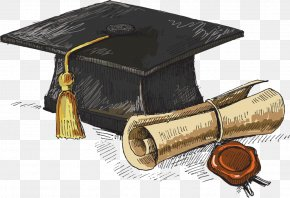 Student - Academic Degree Bachelor's Degree Master's Degree Doctorate Doctor Of Philosophy PNG