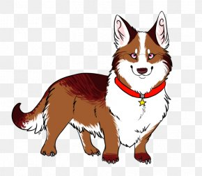 Dog - Dog Breed Red Fox Whiskers Snout PNG