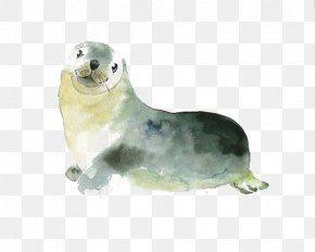 Seal - Watercolor Painting Printmaking Printing Illustration PNG