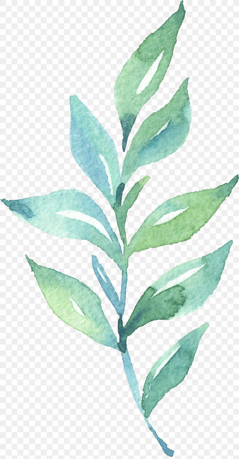 Leaf Watercolor Painting, PNG, 1626x3118px, Leaf, Art, Branch, Canvas, Media Descriptor File Download Free