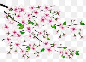 Petal Cut Flowers - Floral Spring Flowers PNG