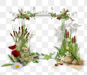 Graduation Ceremony Digital Scrapbooking Clip Art - Floral Design Paper Picture Frames Clip Art PNG